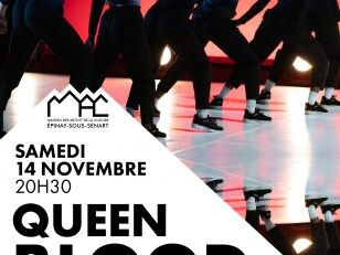 Danse hip hop : Queen Blood, un crew 100% féminin ! 15