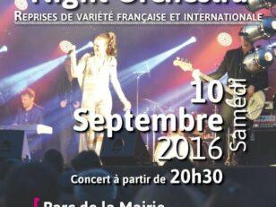 A ne pas manquer ! Concert de NIGHT ORCHESTRA samedi soir 19