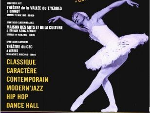 50 ans de Val d'Yerres Danse 15