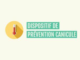 Mise en place d'un dispositif de prévention canicule 35