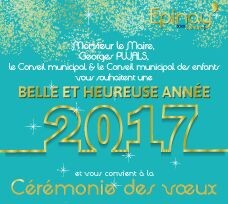 Cérémonie des Vœux 2017 1