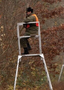 Prudence en forêt : jour de chasse 6