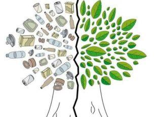 Forêt de Sénart : opération de nettoyage des bords de la RN6 le dimanche 8 avril de 9h à 10h30 2