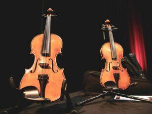 Dispositif d'Éducation Musicale en Milieu Orchestral à Vocation Sociale (DEMOS) 5