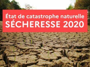 CATASTROPHE NATURELLE SECHERESSE 2020 10